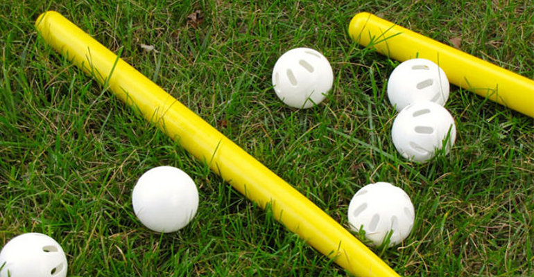 Image for Intramural Wiffle Ball Tournament